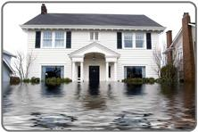 AZ FLOODED in Arizona offers water damage repair, 24 Hour Emergency Water Extraction,  Mold Removal Company, Free Mold Inspection, Discount Mold Removal, Black Mold Repair  AZ